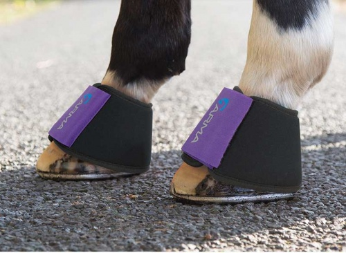 Arma Neoprene Over Reach boots from Shires