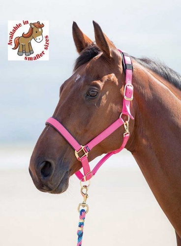 Topaz Nylon Headcollar from Shires