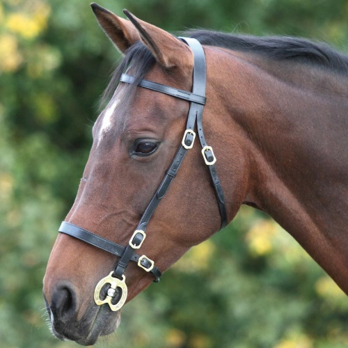 Blenheim Inhand Bridle from Shires Equestrian