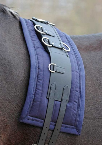 Lunge Roller Pad in Navy from Shires Equestrian