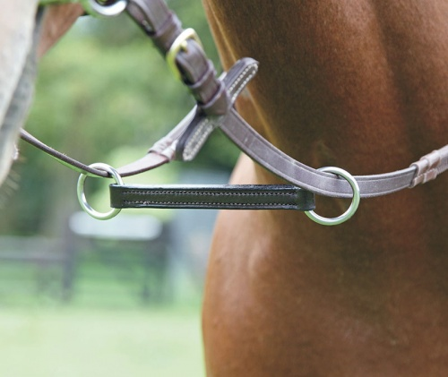 Blenheim Irish Martingale from Shires