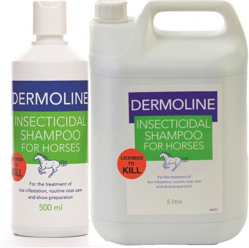 Insecticidal Shampoo from Dermoline