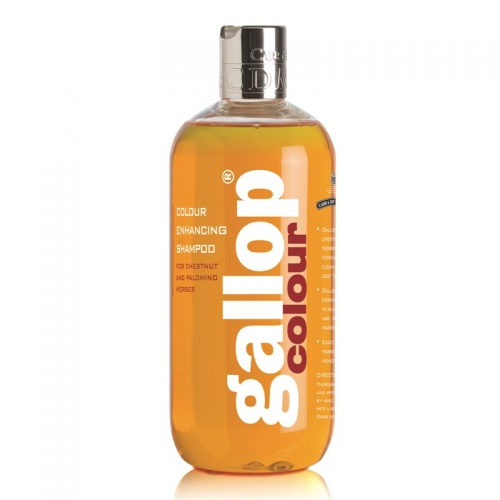Gallop Colour Shampoo from Carr Day Martin 500ml