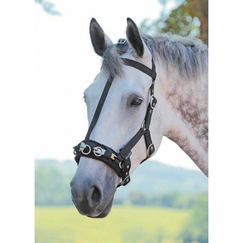 Lunge Cavesson with Fleece lined Noseband from Bridleway