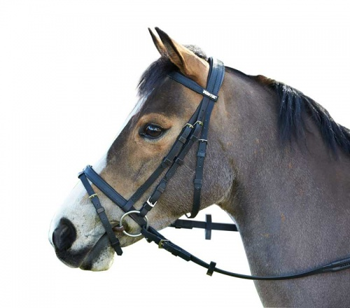 Wintec Synthetic Flash Bridle - No Reins