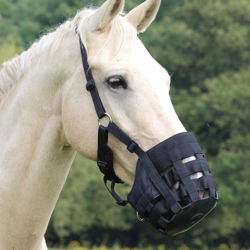 Comfort Grazing Muzzle From Shires Equestrian