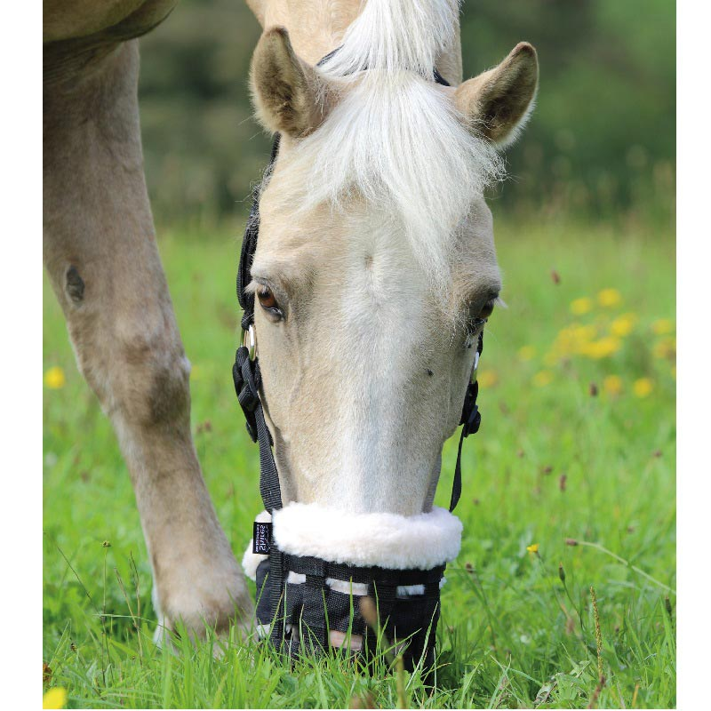 Deluxe Comfort Grazing Muzzle From Shires Equestrian