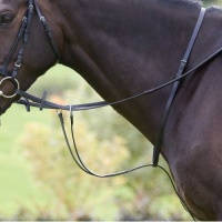 Blenheim Running Martingale from Shires Equestrian