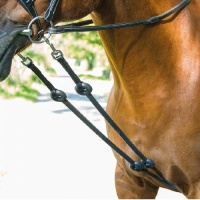 Blenheim Outline Training Aid from Shires Equestrian