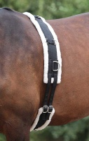 Nylon Lunge Roller with Fleece Padding from Shires Equetrian