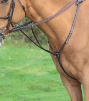 Shires Aviemore Hunt Breastplate Havana
