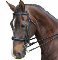 Collegiate Raised Patent Weymouth Bridle