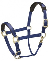 Premium Padded Head Collar from Legacy Equestrian - Royal Blue
