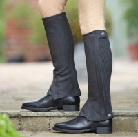 Amara Half Chaps from Shires Equestrian