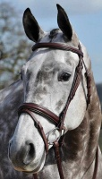 Buckingham Crank Flash Bridle from Bridleway