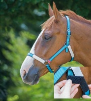 Break Free Headcollar from Bridleway